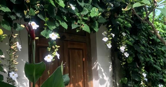 Villa Vali Asri_Home-01